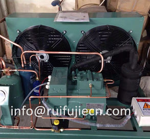 China Unit - Spb09kl  Bitzer Air Cooled Condenser Unit for Model 4Tes-9y supplier