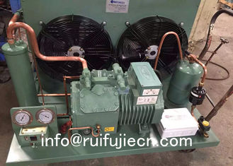 China Unit-SPB06KL Bitzer Air Cooled Condenser Compressor Condensing for Model 4CES-6Y supplier