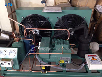 China Middle Low Temperature V Type Condenser Housing Type Bitzer Compressor Condensing Unit supplier