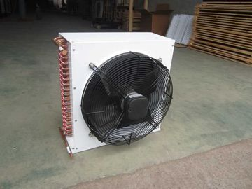 China DL series DL-2/10 Low Power Consumption Air Cooled Condenser Unit Evaporative Cooling Systems supplier