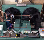 China Unit - Spb09kl  Bitzer Air Cooled Condenser Unit for Model 4Tes-9y factory