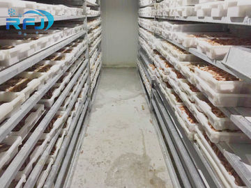 China Fresh Tuna Small Tunnel Plate Blast Walk In Freezer Industrial Seafood Iqf Cold Contact Panel distributor
