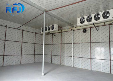 China Walking Deep Freezer Commercial Cold Room 380V/3P/50Hz Cooler For Sea Food distributor